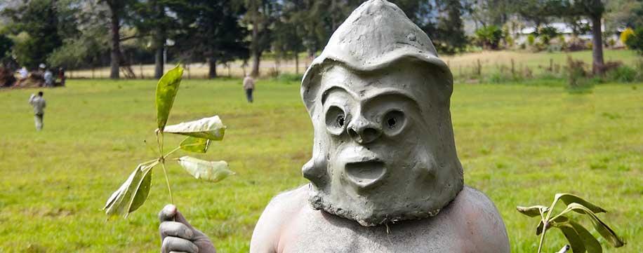 Papua New Guinea Festival