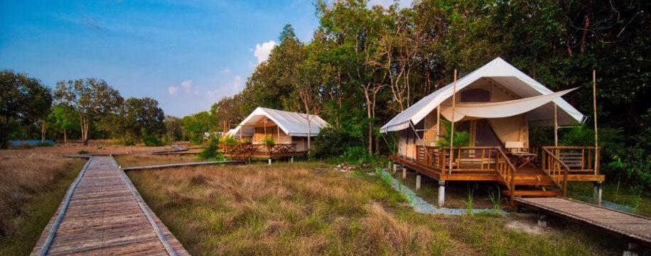 Cambodia Camping Cardamon
