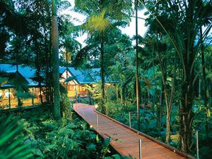 Silky Oaks Australia