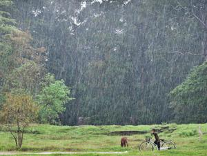 Angkor, Cambodia in the Rain