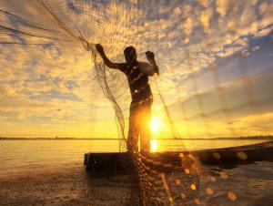 sustainable fishing
