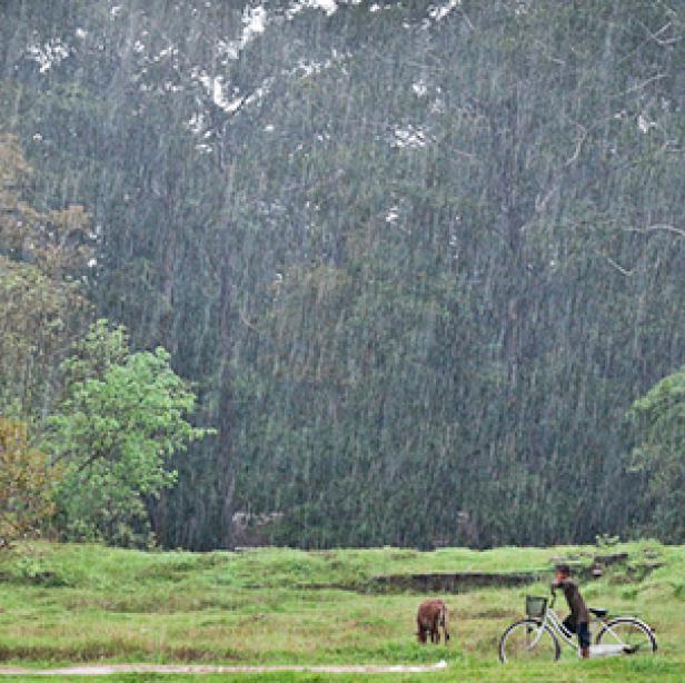 Angkor, Cambodia in the Rain